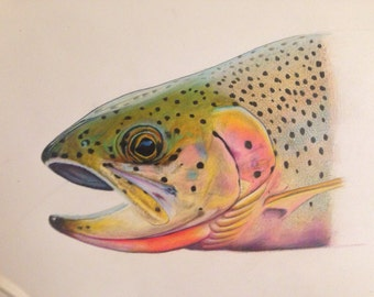 """SMALL 8.5x11"""" Cutthroat Trout Print limited edition"""