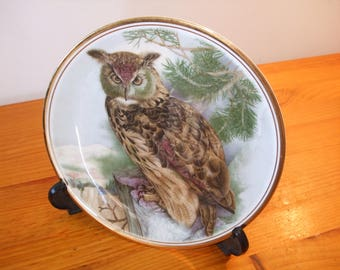 Edwardian Fine China Long Eared Owl Plate