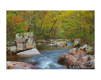 "Fine Art Color Landscape Photography of Hawn State Park in Missouri - ""Fall Colors on Pickle Creek 2"""
