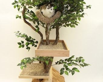 Adult (medium) Cat Tree House