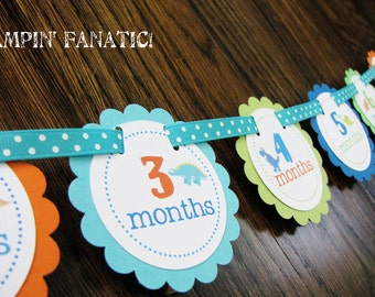 Dashing Dino Collection: Just Born/0-12 Mos Dinosaur First Birthday Photo Picture Banner w/clips