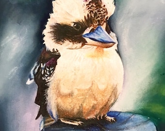 Kookaburra drawing