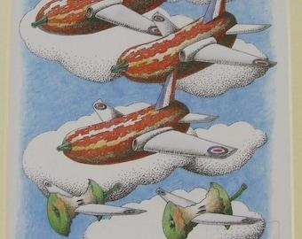 Simon Drew print Flying Marrow Core Jet signed mounted art  for framing BNIB Humorous cook pilot gardener man woman vegetable gift