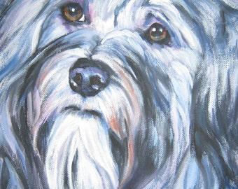 Havanese portrait CANVAS print of LA Shepard painting 8x8 dog art