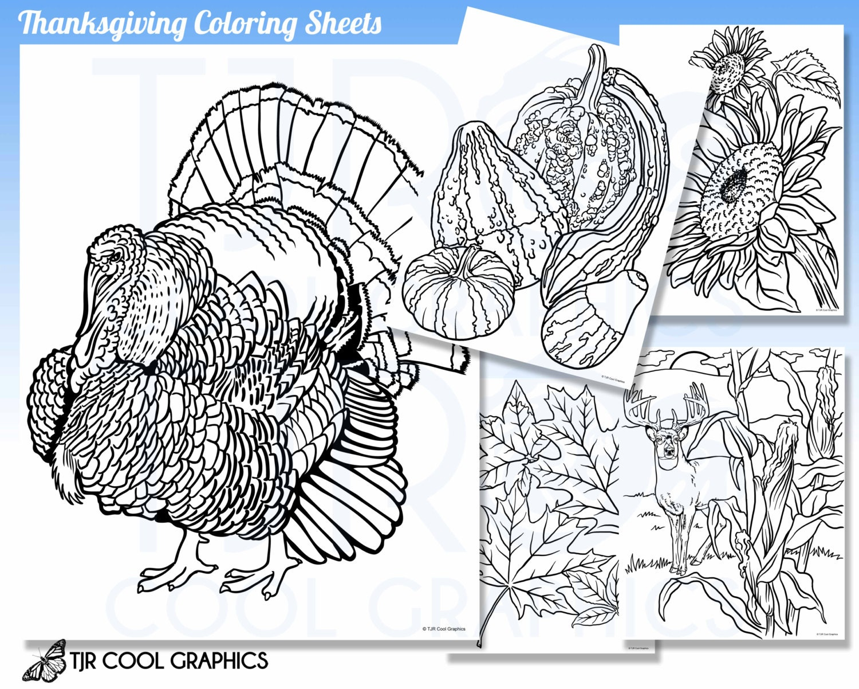 Thanksgiving Färbung Bettwäsche Kids Digital realistisch JPG