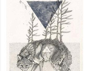 The Wolf Lupus - 11 x 14 art poster constellation print