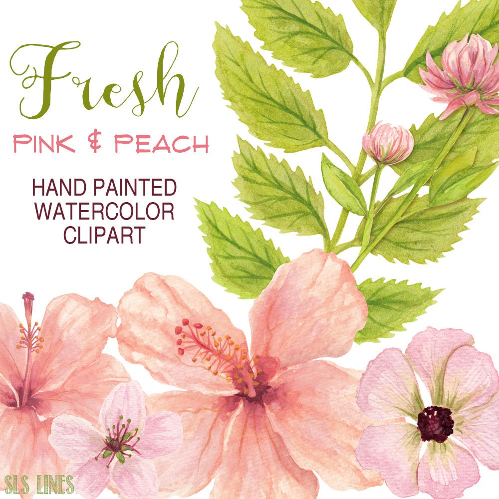 Watercolor flowers clipart pink and peach hibiscus flowers zoom izmirmasajfo