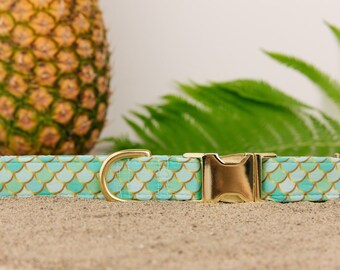 Mermaid Dog Collar, Teal Dog Collar, Under the Sea, Gold, Mint, Mermaid Scales, Fish Scales, Summer Dog Collar, Gold Metal Buckle
