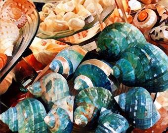 Seashells, Digital art from photograph, Sea shell art, Square print, Nautical art, Beach house art