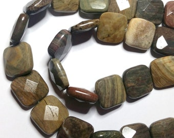 Silver Jasper faceted