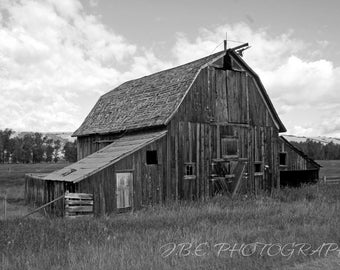 Old Feller | Photography | Photo Print | Wall Art | Home Decor | Barn | Midwest | Building | Field | Nature |
