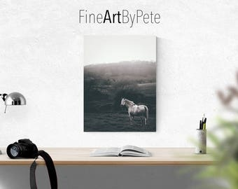 Horse photo, horses, gift for horse lover, digital download, instant, printable art, print, prints, black and white, photography