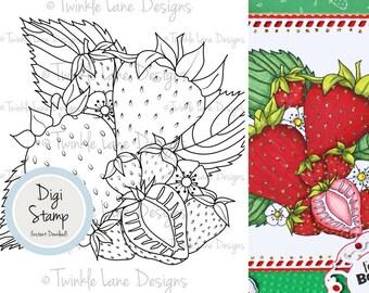 Strawberries, Digital Stamp, Strawberry Clipart, Fruit Digi Stamp, Fruit Clipart, Printable Line Art, Digital Strawberry, Berry, Papercraft