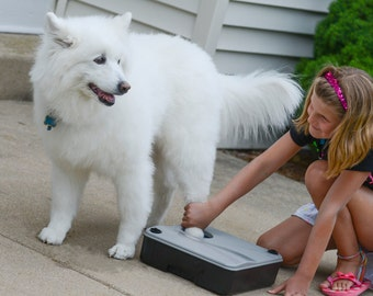 Paw Boss Paw Washer for Dogs