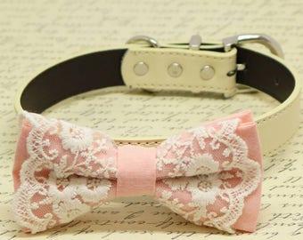 Blush Lace dog bow tie collar, Puppy Gift, Pet wedding accessory, Birthday