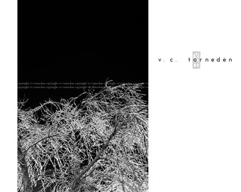 ice, fine art black & white photographic print