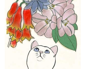 "White Cat Art - Cat print - Cat wall art - Cat Artwork White Cat and Flowers -  - 4' X 6"" - 4 for 3 SALE"