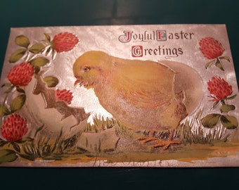 Beautiful vintage postcard baby chick with egg