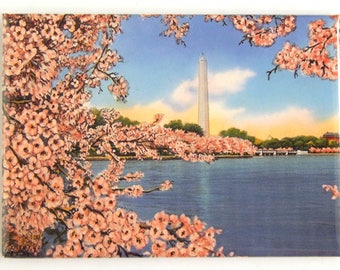 Washington DC Cherry Blossom Fridge Magnet