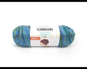 Caron Simply Soft Paints Yarn, Spring Brook, 5 oz