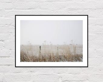 Winter Farm Print, Farm Photography, Rustic Wall Art, Farm Art, Animal Printable, Farm Cows, Snowy Pasture, Winter Decor, Digital Download