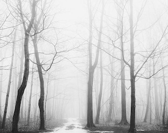 "Foggy Forest Print, ""Winter Fog"", Landscape Photography, Black and White Photography, Nature Photography Print, Modern Minimal Wall Art"