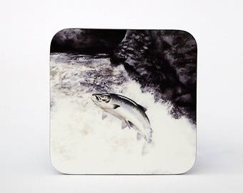 Leaping Salmon Coaster