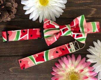 Dog collar, watermelon dog collar, watermelon collar, watercolor dog collar, dog collar with bow tie, bow tie collar, summer dog collar