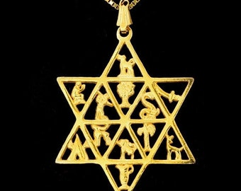 Star Of David For Him.14k Gold 12 Tribes Of Israel.12 Tribes Gold Men Necklace.Jewish Gift For Your Man.Valentine's For Him.FREE SHIPPING!