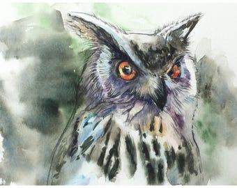 Owl Portrait 2 - Original Watercolor Painting