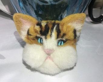 Blue Eyes Kitty
