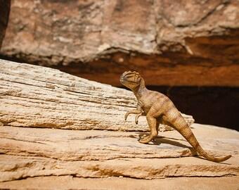 Allosaurus Dinosaur Art Print, Boys Room Decor, Dino Decor, Toddler Room, Nursery Art, Fun Kids Wall Art, Paleontology, Archaeology
