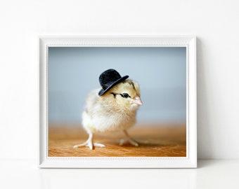 Chicken Photography Baby Animal Print Chick Chicken Wearing A Black Bowler Hat Nursery Gift Decor 8x10 (1) SALE