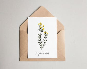St John's Wort folded card