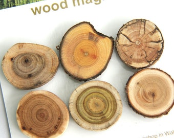 6 wood magnets - for home or office - butternut buckthorn spalted maple cherry sumac cedar - dark set