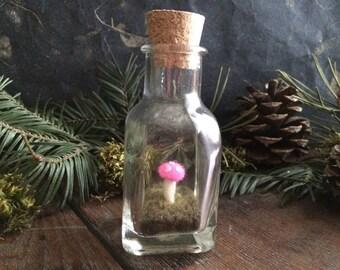 Amanita mushroom terrarium, Hot Pink, a felted wool garden in a glass bottle, felt moss terrarium, woodland terrarium, mushroom hunter gift