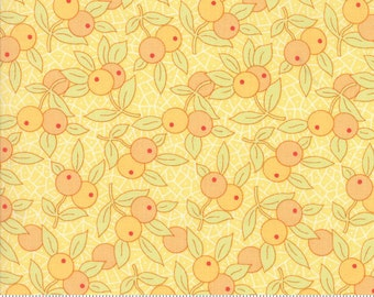 Chestnut Street by Fig Tree Quilts for Moda Fabrics, Daisy, 2027318
