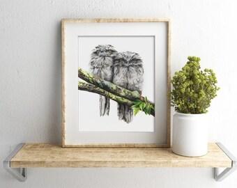 8x10 Tawny Frogmouth Print - Frogmouth Art - Australian Bird Art - Australian Wildlife Art