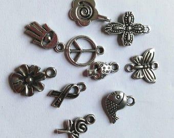 10 Mixed Tibetan Silver Charms