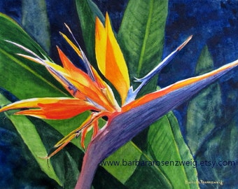 Tropical Flower Print, Bird of Paradise, Exotic Flower Painting, Tropical Wall Art, Exotic Art, Flower Watercolor, Home Decor Wall Art, Gift