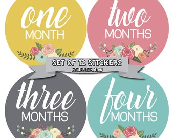 Baby Monthly Stickers, Baby Girl Monthly Stickers, Milestone Stickers, Baby Girl Month Sticker - Baby Girl, Girl, Baby Shower Gift 1104