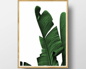 Tropical Wall Art, Botanical Print, Leaf Print, Tropical Decor, Tropical Print, Tropical Leaf Print, Botanical Wall Art, Leaf, Tropical  Art