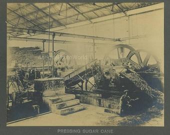 Java sugar procssing factory antique photo