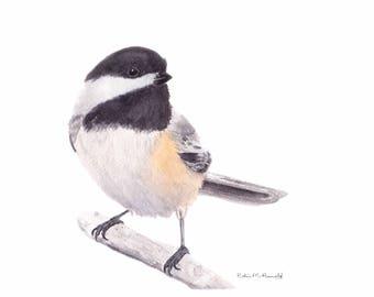 Chickadee Print of Original Watercolor Painting, animal,bird art, wildlife,nature,bird lover,black capped chickadee,  birdwatcher