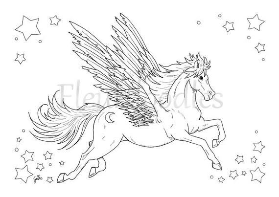 Pegasus Malseite für Erwachsene Pferde Malseiten