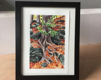 SALE Watercolour tree roots/ Rattlesnake point