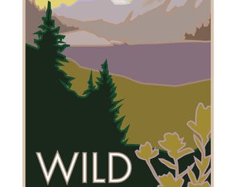 Wild Basin Rocky Mountain National Park Poster