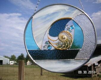 Chambered Nautilus Seashell Center Section in Aqua