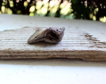 Natural Driftwood Jewelry Pendant ,  Jewelry Supplies , DIY Driftwood Nugget for Jewelry Design