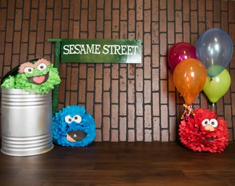 Sesame Street Digital Backdrop For Photography